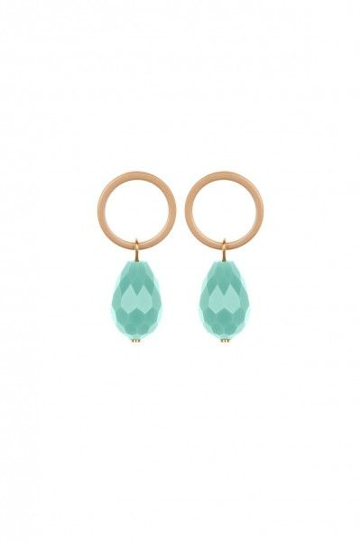 Circle Crystal Earings